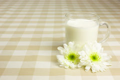 Cup of milk Royalty Free Stock Photo