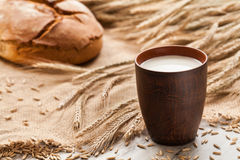 Cup of milk on background ears rye and bread. Royalty Free Stock Photo