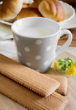 Cup of milk an  dried cookies Royalty Free Stock Photos