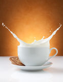 Cup of milk splash with biscuit Royalty Free Stock Image