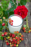 Cup of milk and  strawberries Royalty Free Stock Photo
