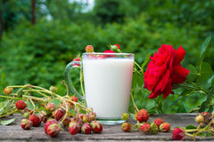 Cup of milk and  strawberries Royalty Free Stock Photos
