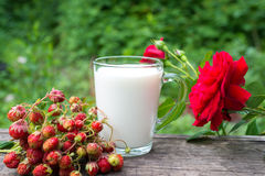 Cup of milk and  strawberries Stock Images