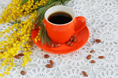 Cup and mimosa Stock Photos