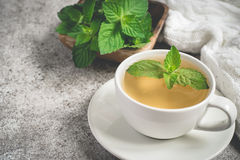 Cup of mint tea closeup, fresh mint leaves and a rug on a gray background.  stock image