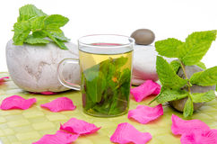 Cup of mint tea, fresh mint, pebbles and pink petals on a green Stock Image