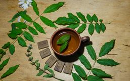 A cup of mint tea and some runes. A cup of hot green mint tea and scandinavian runes royalty free stock photo