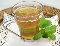 Cup of mint tea with a sprig of mint Stock Images