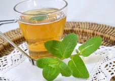 Cup of mint tea with a sprig of mint Royalty Free Stock Photography