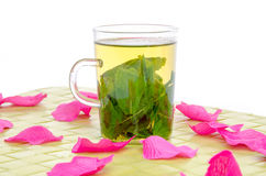 Cup of mint tea surrounded with pink petals on a green place mat Stock Photography