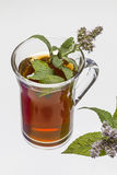 Cup of mint tea Stock Photography