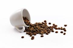 Cup mit coffe Bohnen Stockfoto