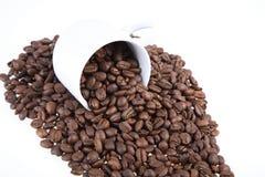 Cup mit Kaffeebohnen Lizenzfreies Stockbild