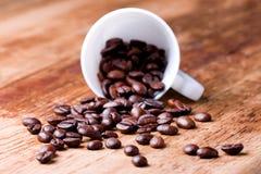Cup mit Kaffeebohnen Stockbilder