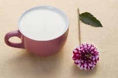 Cup mit Milch und Blume Stockfotos