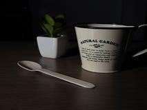 cup mitt arkivfoto