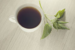 Cup of nettle tea with fresh nettle Royalty Free Stock Photography