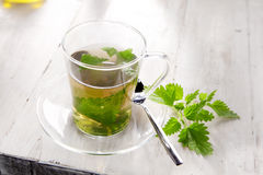 Cup of nettle tea for healthy diuretic Stock Photo
