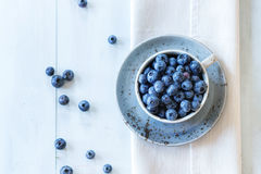 Cup Of Blueberries Royalty Free Stock Photo