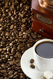 Cup Of Coffee And Beans Stock Images