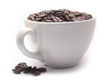 Free Cup Of Coffee Beans Stock Photography - 3712302