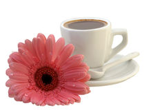 Cup Of Coffee With A Gerbera Royalty Free Stock Photography