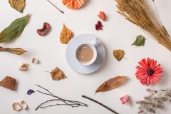 Free Cup Of Coffee With Autumn Dried Plants Royalty Free Stock Images - 99813019
