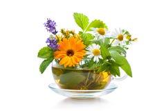 Free Cup Of Herbal Tea Stock Photos - 107240463