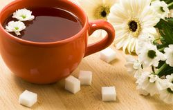 Free Cup Of Herbal Tea Stock Images - 2687284
