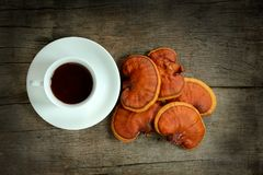 Cup Of Reishi Tea And Fresh Lingzhi Mushroom. Stock Images