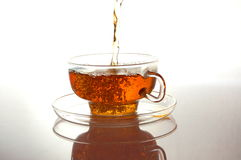 Free Cup Of Tea Royalty Free Stock Photos - 11021418