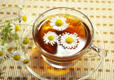 Cup Of Tea And Chamomile Blossoms Royalty Free Stock Image