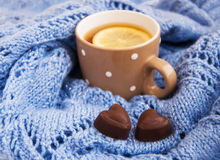 Free Cup Of Tea In The Winter Stock Photos - 28217453