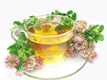 Cup Of Tea With Clover Stock Photography
