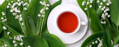 Free Cup Of Tea With Fresh White Spring Flowers Banner. Copy Space, Concept Of Sprintime Seasonal Tea, 8 March Woman Day, Romance Stock Photography - 164708682