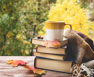 Cup Of Tea With Plaid, Leaves And Books Stock Image
