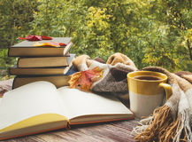 Cup Of Tea With Plaid, Leaves And Books Stock Photos