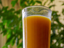 Cup of orange juice Stock Photography