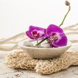 Cup of orchid flowers for beauty treatment Stock Photo