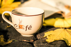 Cup in the park. Cup of coffee when standing on the pavement in the park royalty free stock image