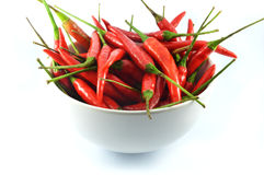 Cup pepper red. Chilli peppers isolated on white Royalty Free Stock Photos
