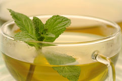 Cup of peppermint tea, close-up Stock Photos
