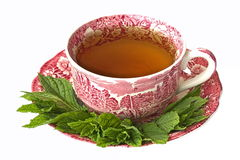 Cup of peppermint tea with fresh leaves Royalty Free Stock Images