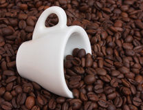 Cup in a pile of coffee beans Stock Images