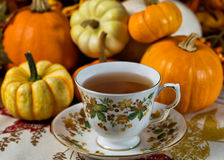 Cup of pumpkin spice tea Royalty Free Stock Photography