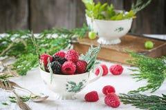 Cup of raspberries and blackberries Royalty Free Stock Photos