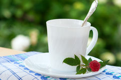 Cup of raspberry tea. Royalty Free Stock Images