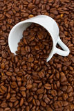 Cup with raw coffee beans Stock Image