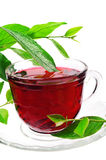 Cup of red flower tea Stock Image