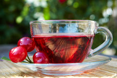 Cup of red tea Stock Photography